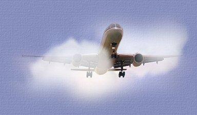 http://www.dylia.com/wingingairplane.jpg